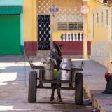 Cuba 2016 _DSC9076 cuba, trinidad