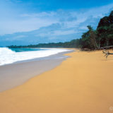 Beach of Panama