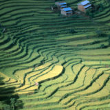 View over rice terraces